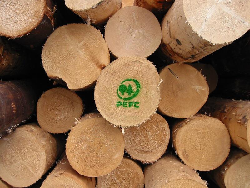 Earth Day, PEFC: no passi indietro su tutela delle foreste per proteggere clima e salute