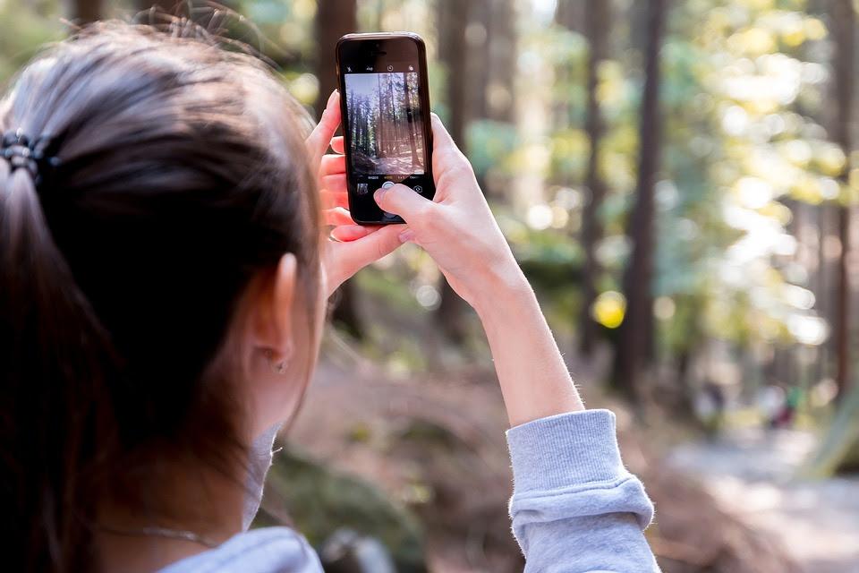 """Quando l'arte incontra la natura: al via la quarta edizione del concorso fotografico """"Scatta il bosco PEFC"""""""