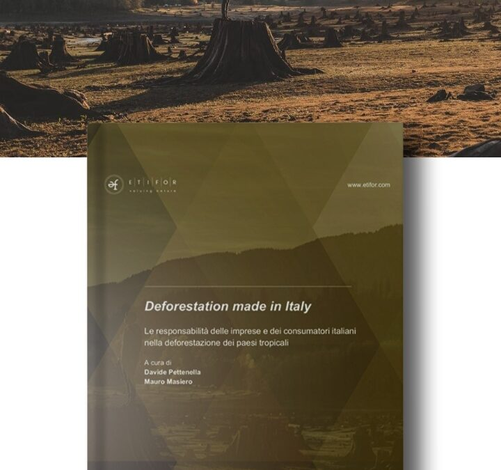 """""""Deforestation made in Italy"""": scarica la pubblicazione"""