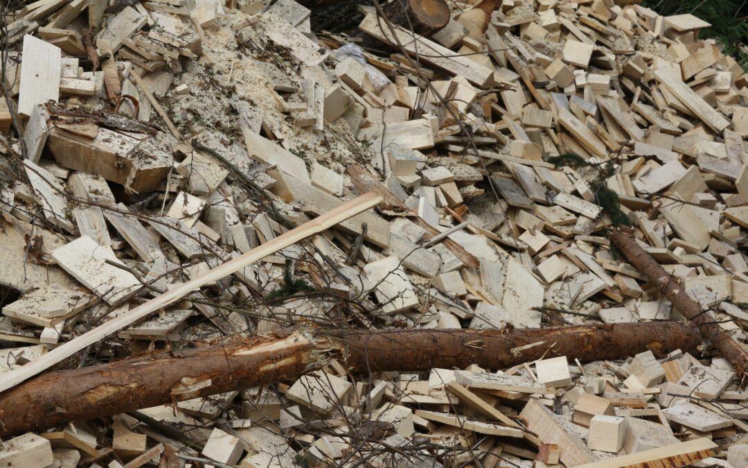 Un impianto a biomasse per la Domini Legnami