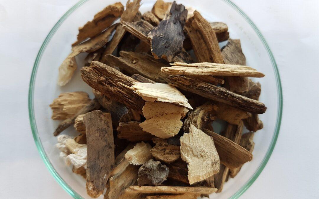 Energia dalle biomasse legnose italiane: un'opportunità