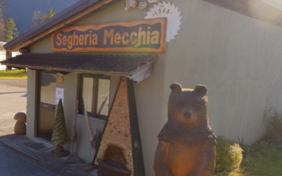 SEGHERIA MECCHIA DI MECCHIA E. & C. SNC