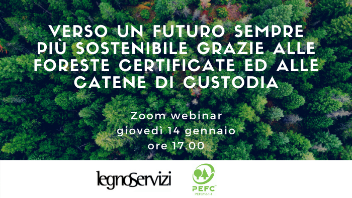 Legno Servizi e PEFC organizzano un webinar sulla certificazione forestale e le catene di custodia